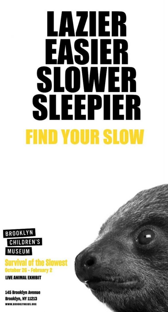 Brooklyn Children's Museum: Find Your Slow