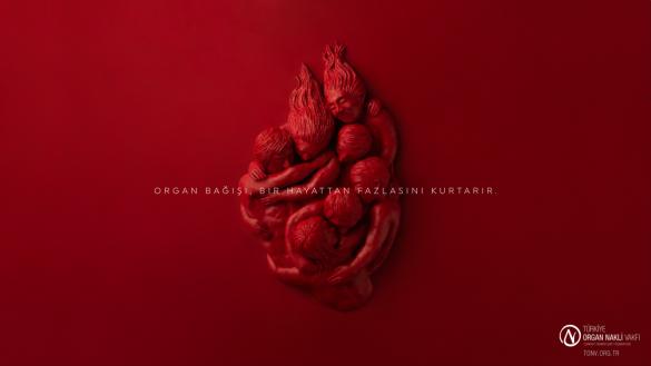 Turkiye Organ Nakli Vakfi / Turkey Organ Donation Foundation: Organ donation saves more than a life